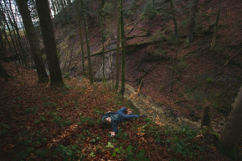People Laying Down Forest Trees Nature Lamdscape Showcase: February