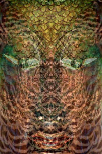 Digital composite image of a turtle