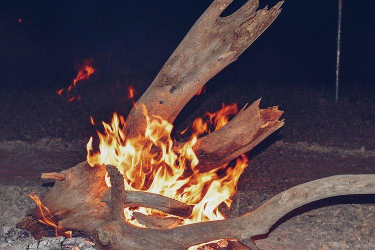 Campfire at the lake side, lake magadi, kenya