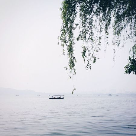 The Essence Of Summer Light And Shadow Nature Photography XiHu Lake View Landscape Photography Hangzhou Lakeside Boat Lake Landscape_Collection Landscape_photography The Great Outdoors - 2016 EyeEm Awards Taking Photos The Week On Eyem IPhoneography Landscape On The Road Hangzhou,China
