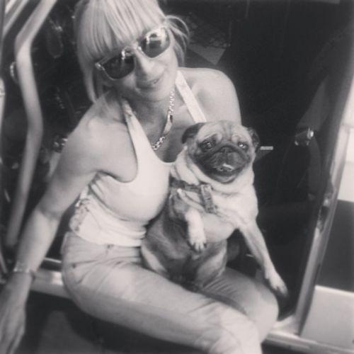 Perro Dog Lola Vero mivecinamiamigatallerteecharemuuuuchodemenos