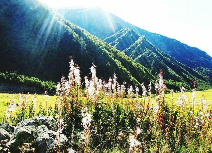 Svaneti- mountains First Eyeem Photo Great Outdoors - 2016 EyeEm Awards