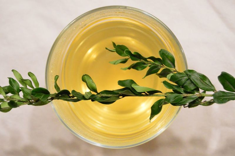 Directly Above View Of Leaves On Drink