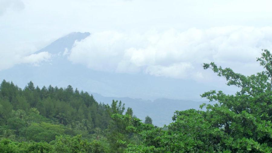 Gunung Merbabu,