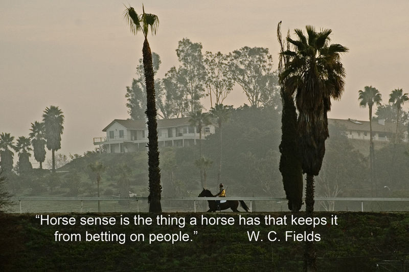 Long awaited birthday of #American film comic, #WCFields and this is one of his better #quotes. The scene is the recently damaged #SanLuisReyDowns training track in #Bonsall. If this #quotograph speaks to you, please #repost it. Bonsall,ca Fire Damage Quotes San Luis Rey Downs W C Fields Horse Quotograph Tree