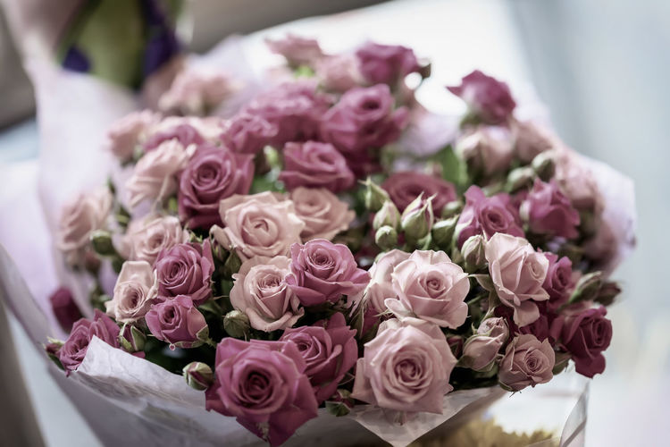 Big bouquet of pink roses close-up, selective focus. Valentine's Day, romantic events Flower Flowering Plant Rosé Beauty In Nature Rose - Flower Freshness Bunch Of Flowers No People Nature Close-up Flower Head Bouquet Vulnerability  Pink Color Pink Pink Flowers Valentine's Day  Event Gift Romantic Love Wedding Lovely Holiday