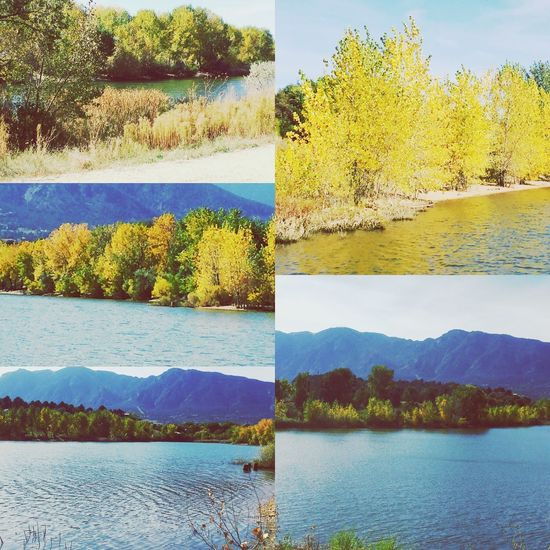 Some images I took while doing a walk around Quail Lake in Colorado Springs.