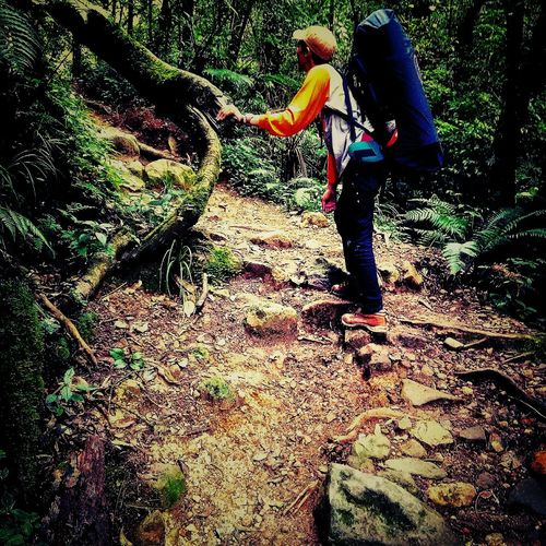 hiking Indonesian Jawabarat Gunung Gede Pangrango Hikingadventures Mountains Tree Hiker One Person Day Full Length Low Section Lifestyles Men Shadow Outdoors Real People People One Man Only Adult Young Adult Adults Only first eyeem photo