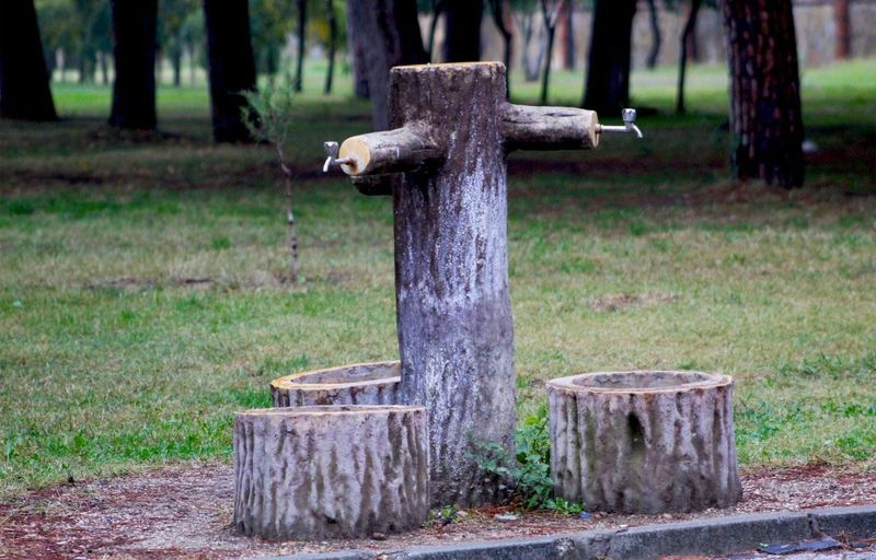 Wooden post in a field