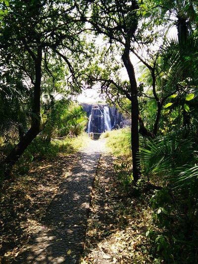 Waterfalls Edge Of The World Zambia Chasing Waterfalls Victoriafalls