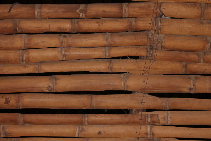Guadua is a type of wood used in the manufacture of muebels in colombia Guadua Wood, Bamboo, Wicker, Furniture, Natural, Architecture Backgrounds Brown Building Exterior Built Structure Close-up Day Full Frame Hardwood Indoors  Nature No People Pattern Textured  Timber Wood - Material