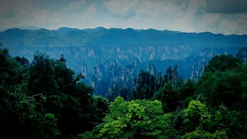 Mountains And Sky Taking Photos Trip Photo Green Nature Green Plant