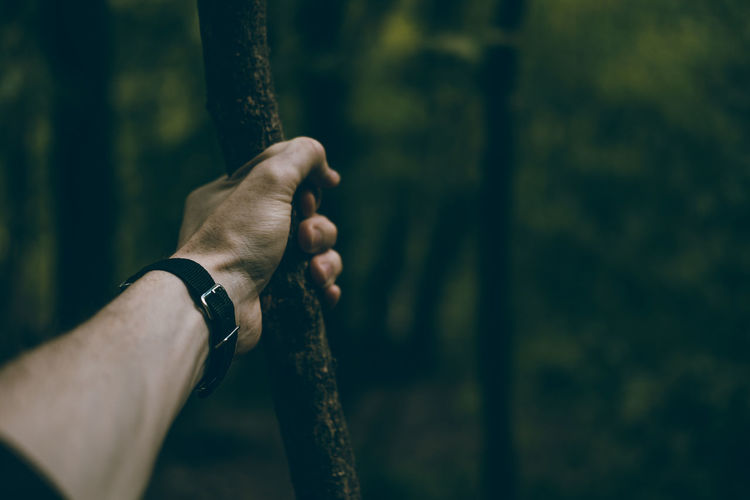 Close-up Day Focus On Foreground Forest Holding Human Body Part Human Hand Nature One Person Outdoors People Real People Tree Tree Trunk
