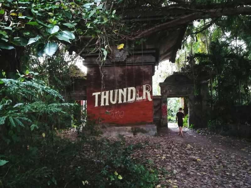Tamanfestivalbali Thunder Thunderstorm Infonesia Text Tree Communication Plant Outdoors Day Built Structure