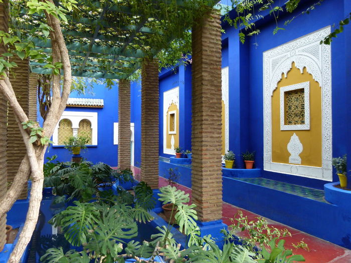 #Blue #Garden #Marrakesh #NoFilter #majorelle #morocco #nofiltertravel #travel #travelphotography #yellow #ysl #yvessaintlaurent Paint The Town Yellow