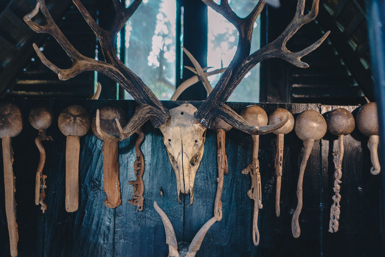 Close-up of skull and utensils hanging on wooden fence