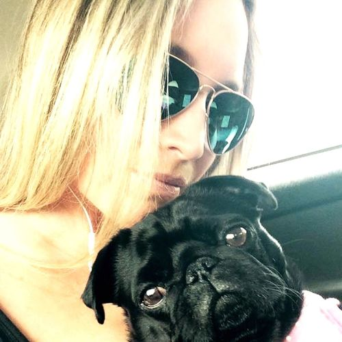 Pug Life EyeAmNewHere Puglover Puglifechoseme Pug Domestic Animals Mammal One Animal Indoors  Young Women Real People Lifestyles People