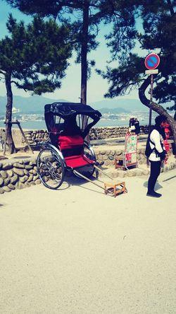 rickshaw 人力車 人力車 観光 黒 風景 日本 伝統 和 車 車夫 俥 Cool Japan Blackandwhite 宮島 乗り物 クールジャパン 空 Black 広島 Transportation Real People Men Mode Of Transport Land Vehicle Day Full Length