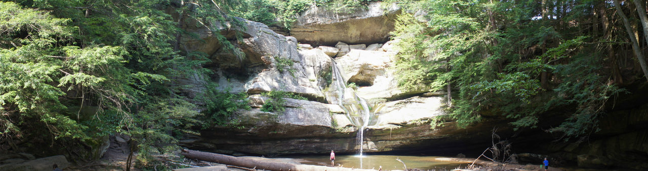 Cedar Falls Forest Waterfall Landscapes With WhiteWall