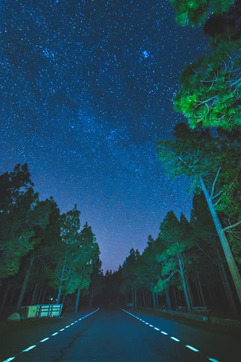 Empty road amidst trees against sky at night