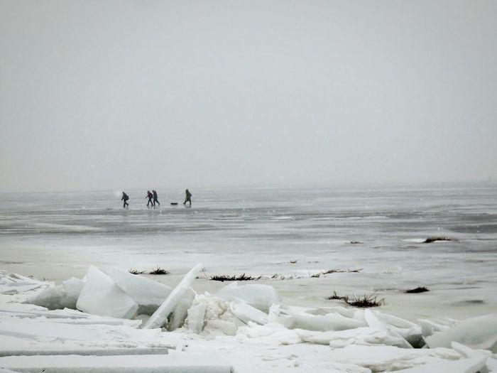 Icebergs On Beach With People Walking On Beach
