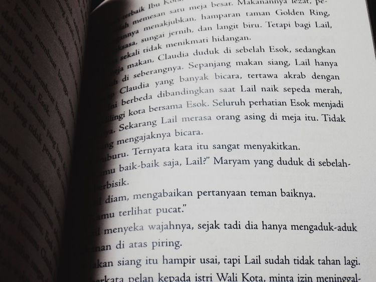 Book Novel Literature Indonesian Sastra