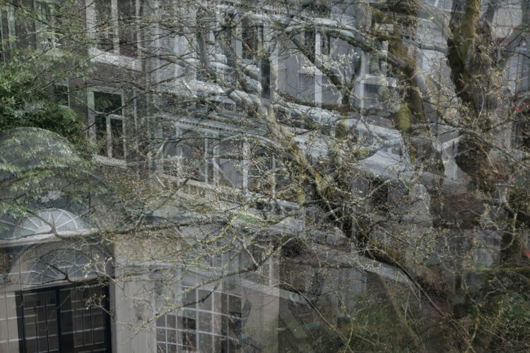 Huis Marseille Cityscape Multiple Exposures Tree Abstract Exposure House Museum Urban