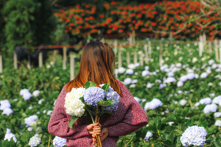 Rear view of woman standing by flowering plants
