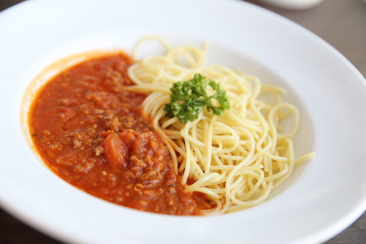 Spaghetti Bolognese Bolognese Bolognese Sauce Pasta Italian Food Food And Drink Food Spaghetti Healthy Eating Ready-to-eat Freshness Close-up Indoors  Plate Meal Wellbeing No People Sauce Studio Shot Meat Garnish Vegetable Spice Herb Tomato Sauce Dinner Savory Sauce
