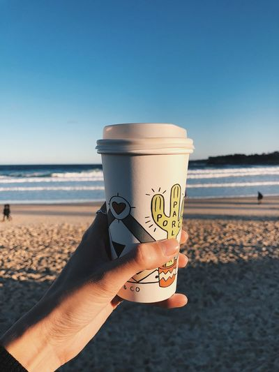 Cropped hand holding disposable coffee cup at beach