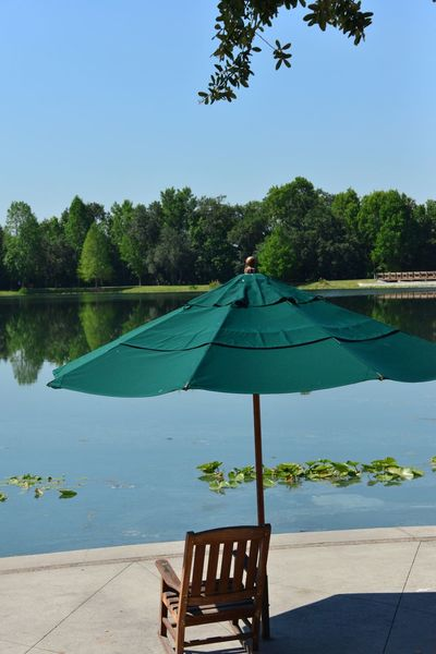 Water Tree Lake Day Tranquility Blue Sky Outdoors Nature Beauty In Nature