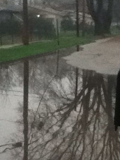 ITS A LAKE ON MY BLOCK LOL