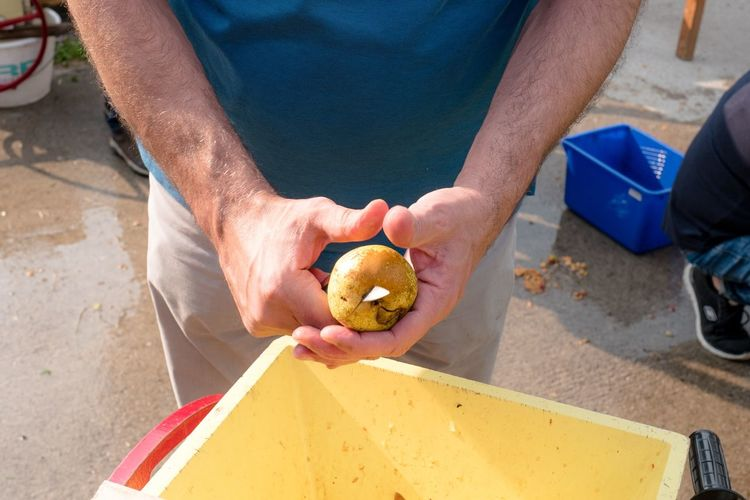 Midsection of man slicing pear at outdoors