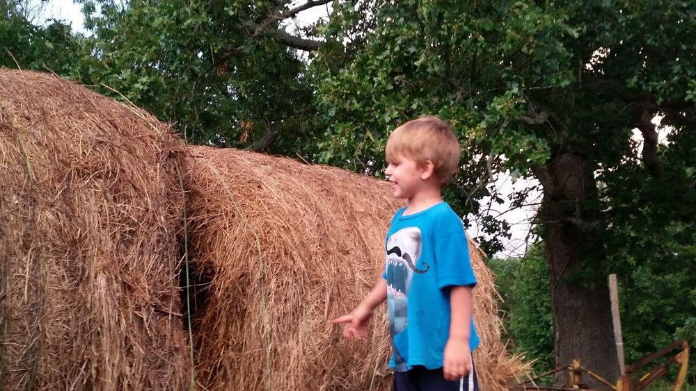 Rural Family 🙏🙌 Hay Bales 👫 Grandkids 💙💛💜 💯 Country Life Summer Time  Fun Playing Preschooler Missouri Ozarks, USA 💥💖 EyeEm Selects Tree Child Childhood Boys Standing Blond Hair Summer Grass Casual Clothing Farmland Bale  Hay Haystack Rolled Up Agriculture Hay Bale Farm