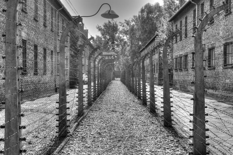 Showcase: February Auschwitz Concentration Camp in Poland. Auschwitz  Concentration Camp WWII Concentration Camp  Memorial Site History Through The Lens  EyeEm Best Shots Poland Travel Photography Travel EyeEm Best Shots - Black + White EyeEm Best Shots - The Streets Wanderlust Never Forget Never Forget Your Past Nazi Germany Learn & Shoot: Leading Lines