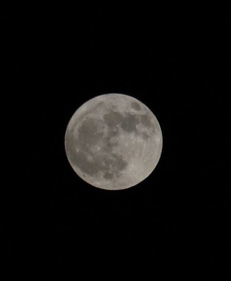 Colorsandpatterns Moon Scenics Full Moon Tranquil Scene Beauty In Nature Night Majestic Planetary Moon Tranquility Astronomy Low Angle View Discovery Exploration Circle Dark Mystery Nature Moon Surface Copy Space Idyllic