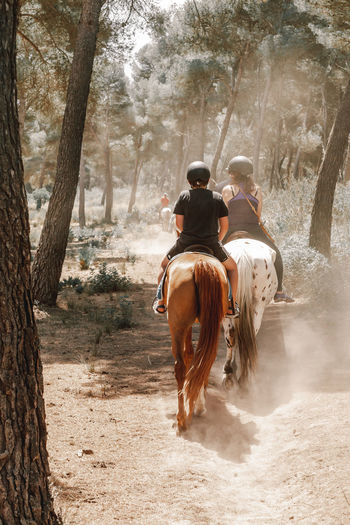 Rear view of people riding horse