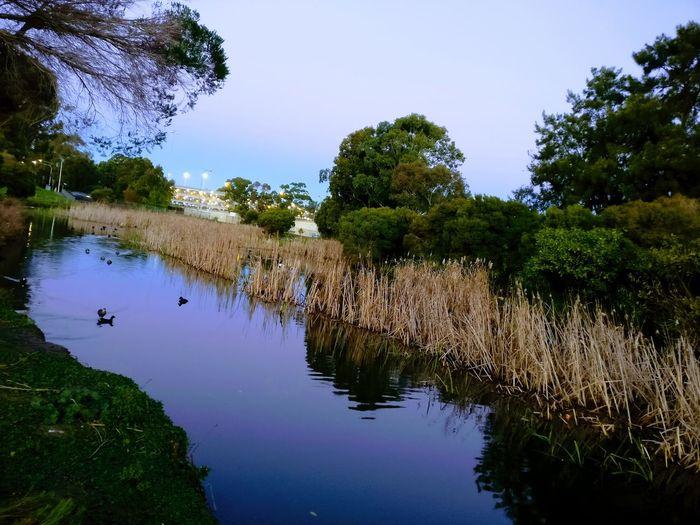 Creek Let's Go. Together. Creek Near Seven Hills Sydney Creek