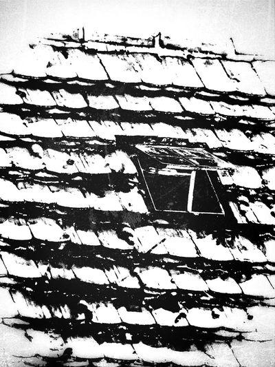 Rural Decay Blackandwhite Creepywindowsunday Shingle Roofs