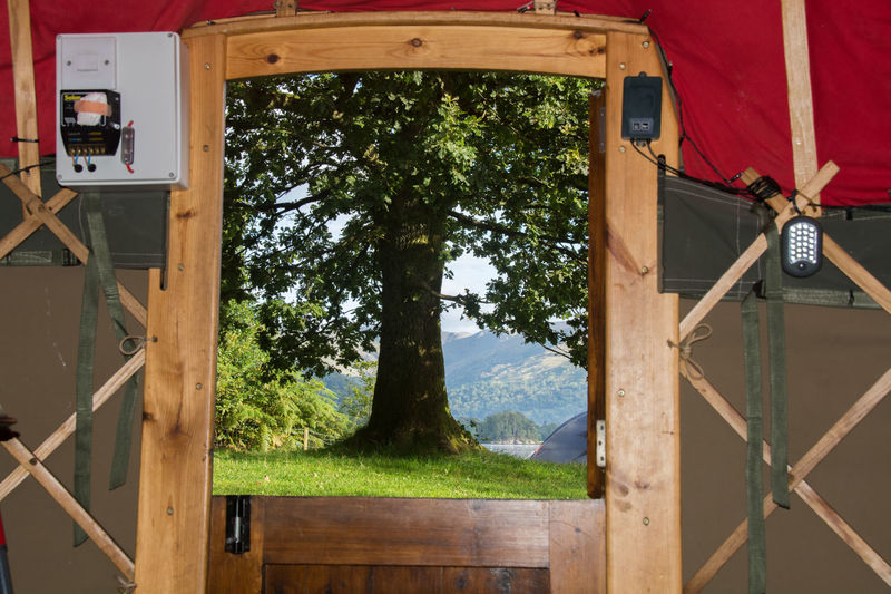 This was taken from the inside of a yurt in the Lake District. Countryside Outdoors Nikon D7100 Vacations Waterfront Nature Yurt Lake District Uk England🇬🇧 Camping Camp Site Windemere Frame Tree