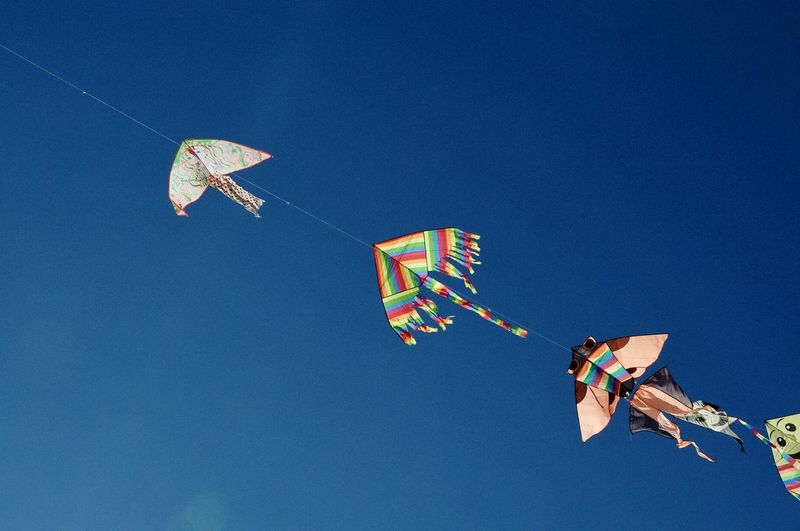 Libertà Blue Celebration Clear Sky Copy Space Day Flying Hanging Kite Flying Low Angle View Multi Colored No People Outdoors Sky