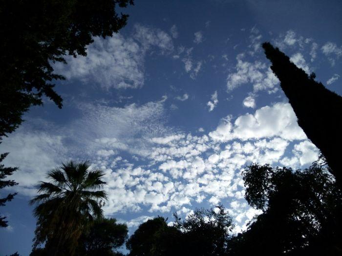 Relaxing Taking Photos Enjoying Life EyeEm Gallery Light Dubrovnik Sunny Day Enjoying Life Clouds And Sky Shadow