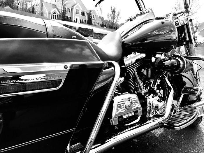 Harley life
