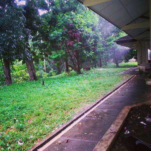 Ceritanya lagi nunggu hujan reda Ooame Kampuspertanian