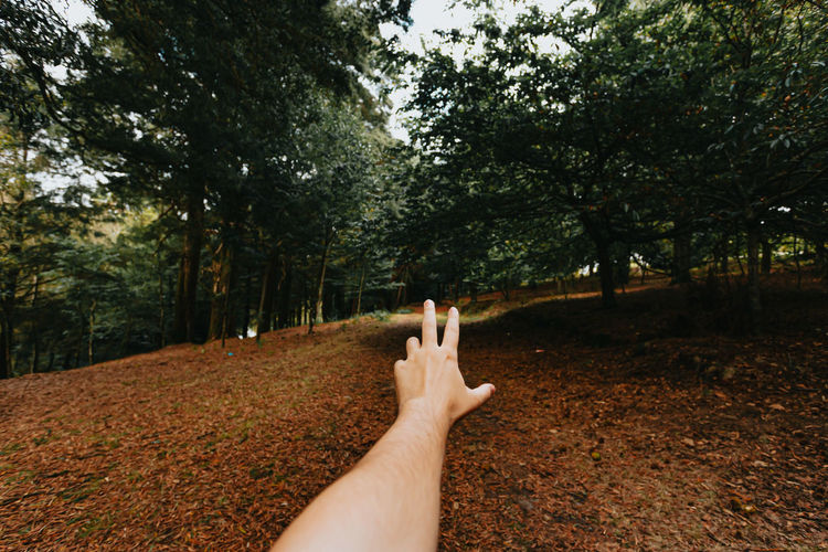 Cropped hand of woman gesturing in forest