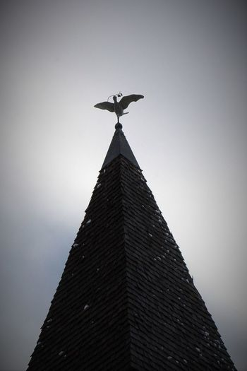 Bird of Peace Aspen, Colorado Bird Bird Sculpture Black And White Photography Church Metal Metal Bird Winter