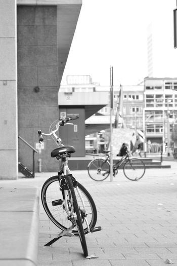 Bicycles riding bicycle on city street