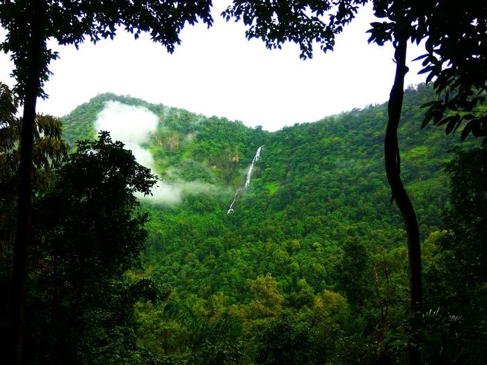 Nature Water Falls Beauty In Nature Clouds Clouds And Sky Falls Forest Green Color Mountain Nature Outdoors Sky Tree Water Waterfall Western Ghats Western Ghats India