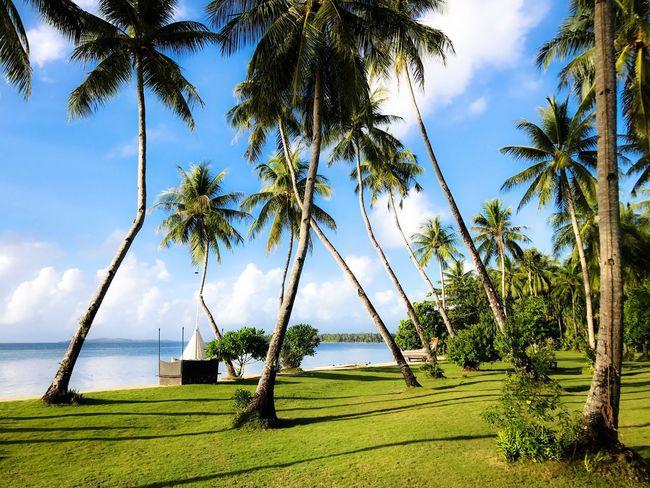 Dedon Dedon Island