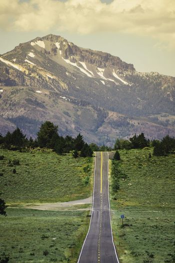 Road and Highway 89 up near Leviathan Peak in Northern California The Way Forward Cloud - Sky Mountain Outdoors Green Color Day No People Tree Sky Grass Beauty In Nature Nature Freshness The Week On EyeEm